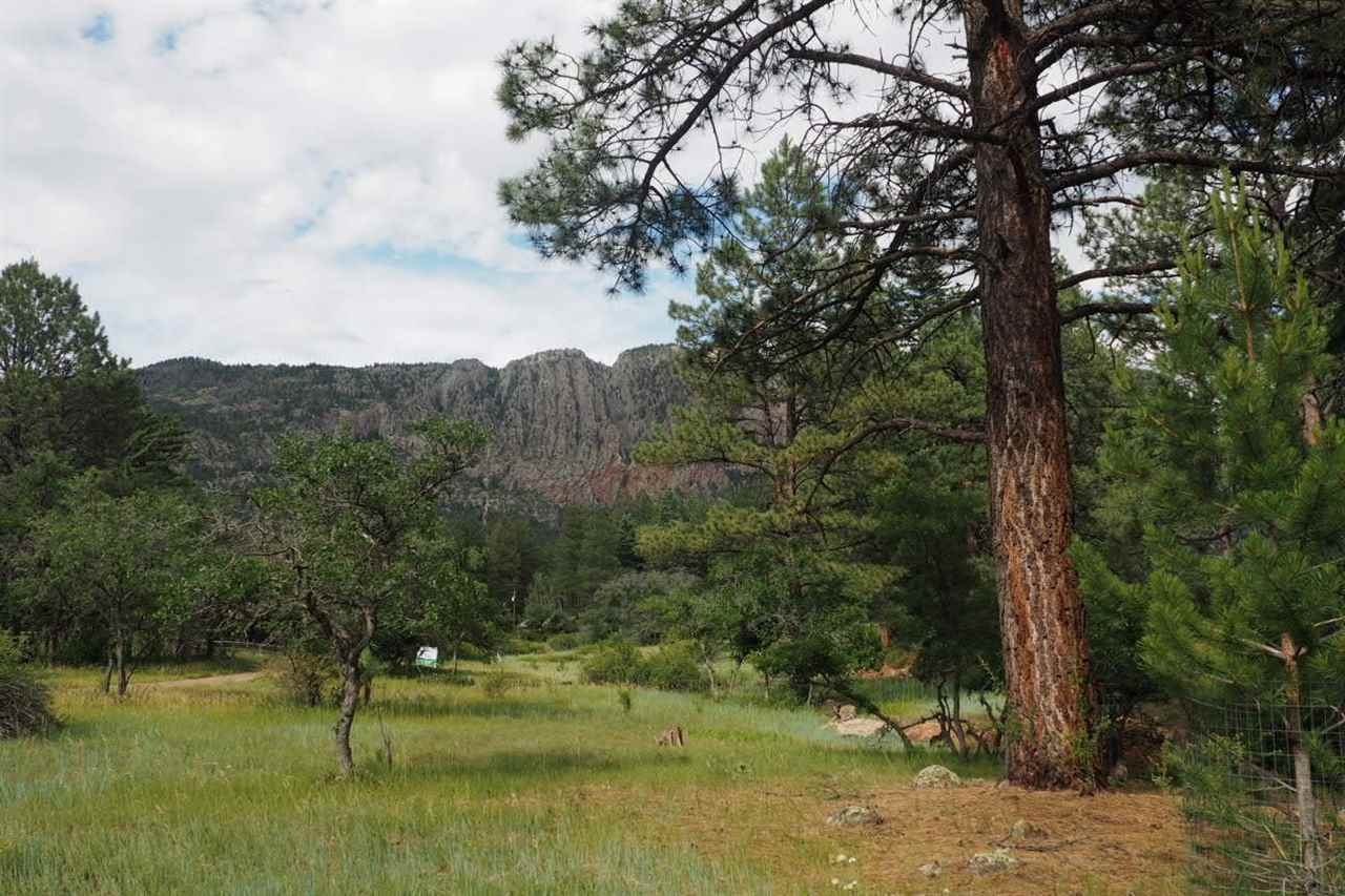 Hwy 512 house 686 chama nm 87520 mls 201603582 for Brazos river cabins